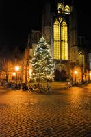 Hooglandse kerk met Kerstboom-C-DSC_3496